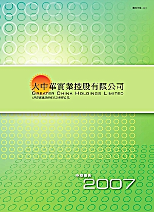 interim report 2007